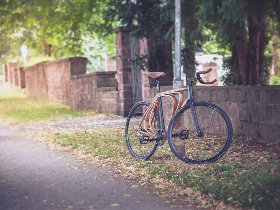 Wooden bicycle 1